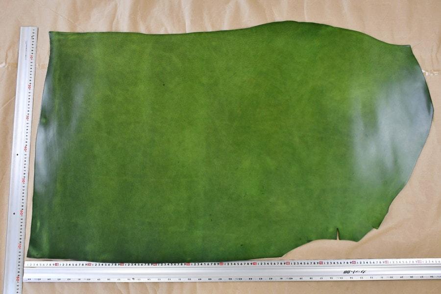 イビザ緑全体