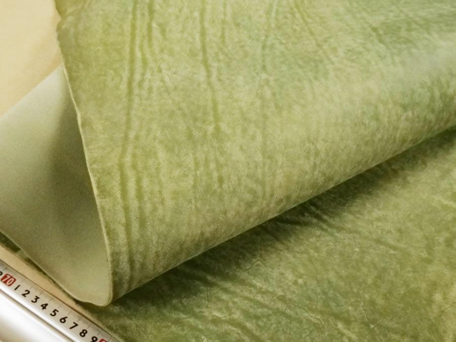 zoom Salvia(薄緑)