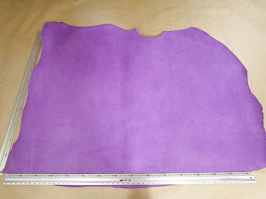 マイネVIOLA(紫)全体