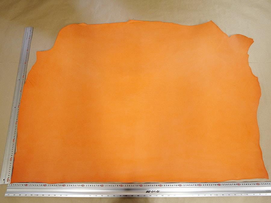 マイネARAGOSTA(橙)全体