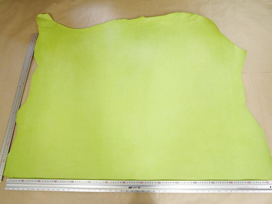 マイネCLOROFILLA(黄緑)全体