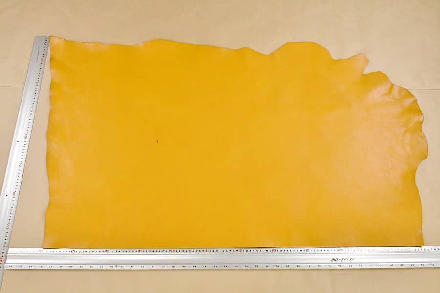 アリゾナ黄全体サンプル