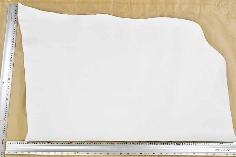 アリゾナ白全体サンプル