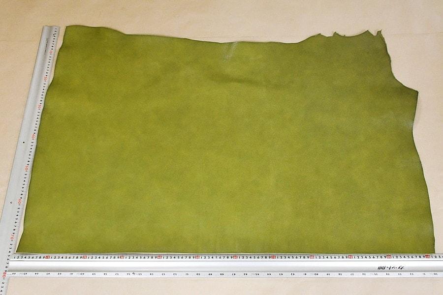 トスカーナ緑全体サンプル