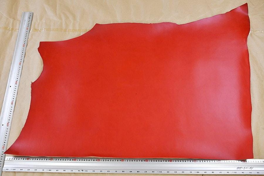 リオショルダー赤全体サンプル